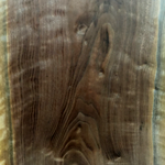 Curly Walnut