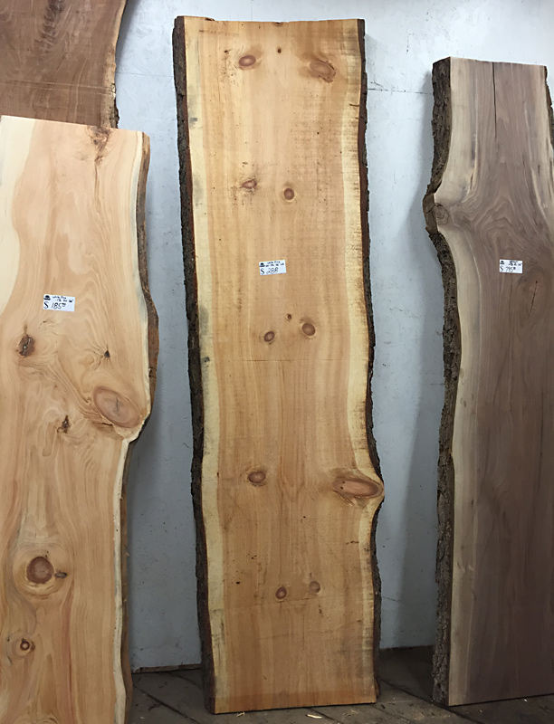 Live Edge Slabs for Counters and Special Furniture from Bailey Wood Products