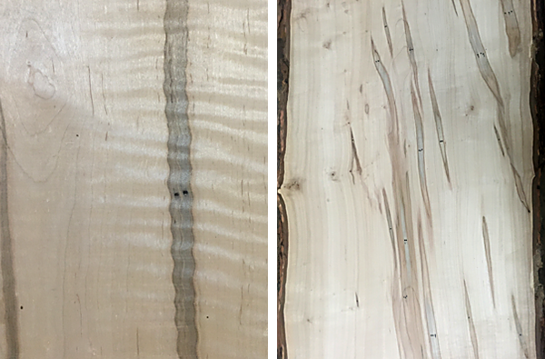 Bailey Wood Products Ambrosia Slabs