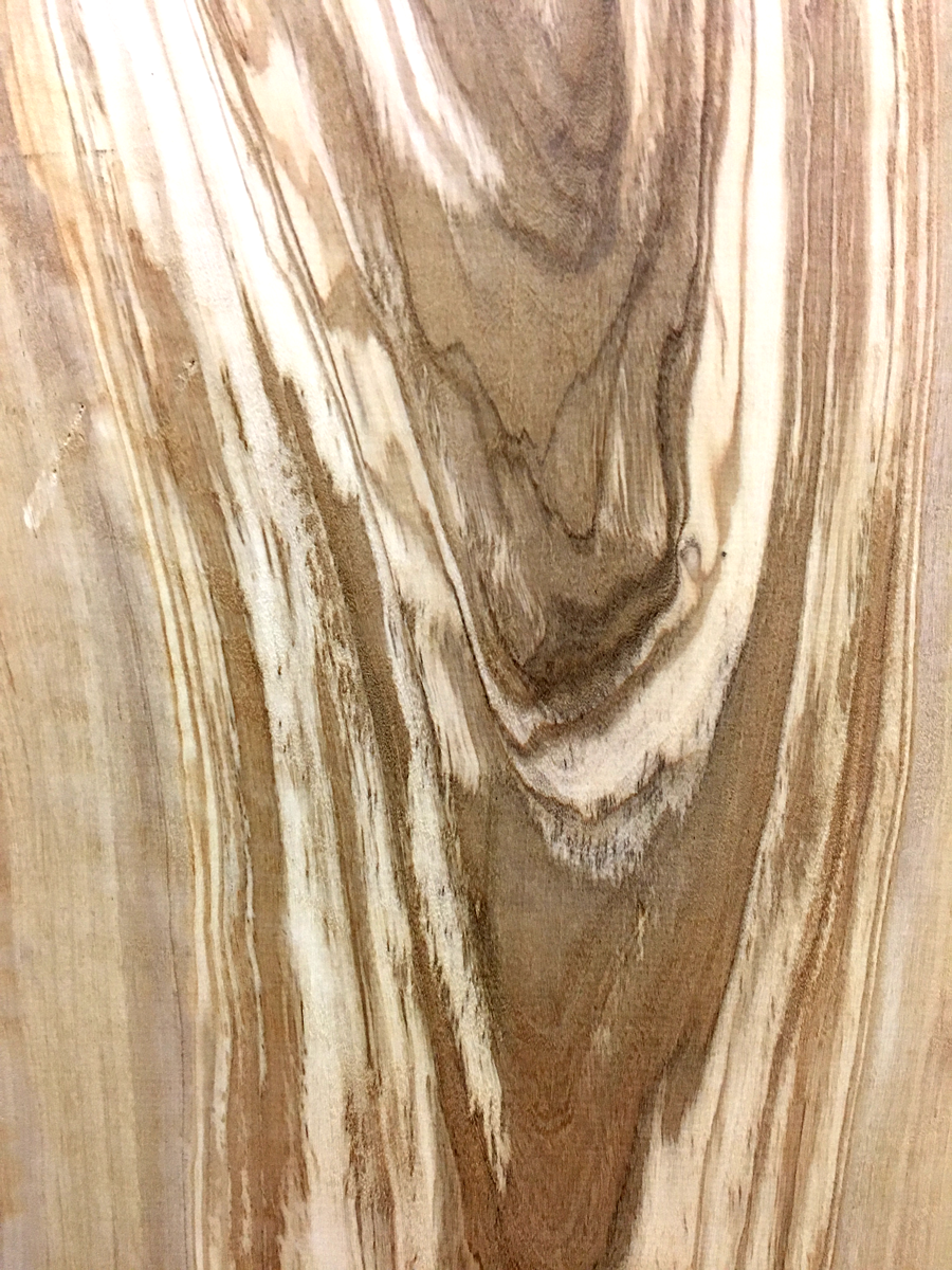 Olivewood at Bailey Wood Products
