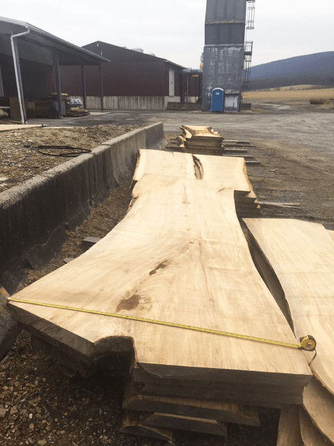Live Edge Maple Slabs for Sale at Bailey Wood Products